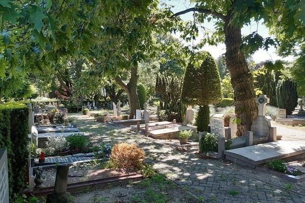Begrafenis bij begraafplaats Buitenveldert